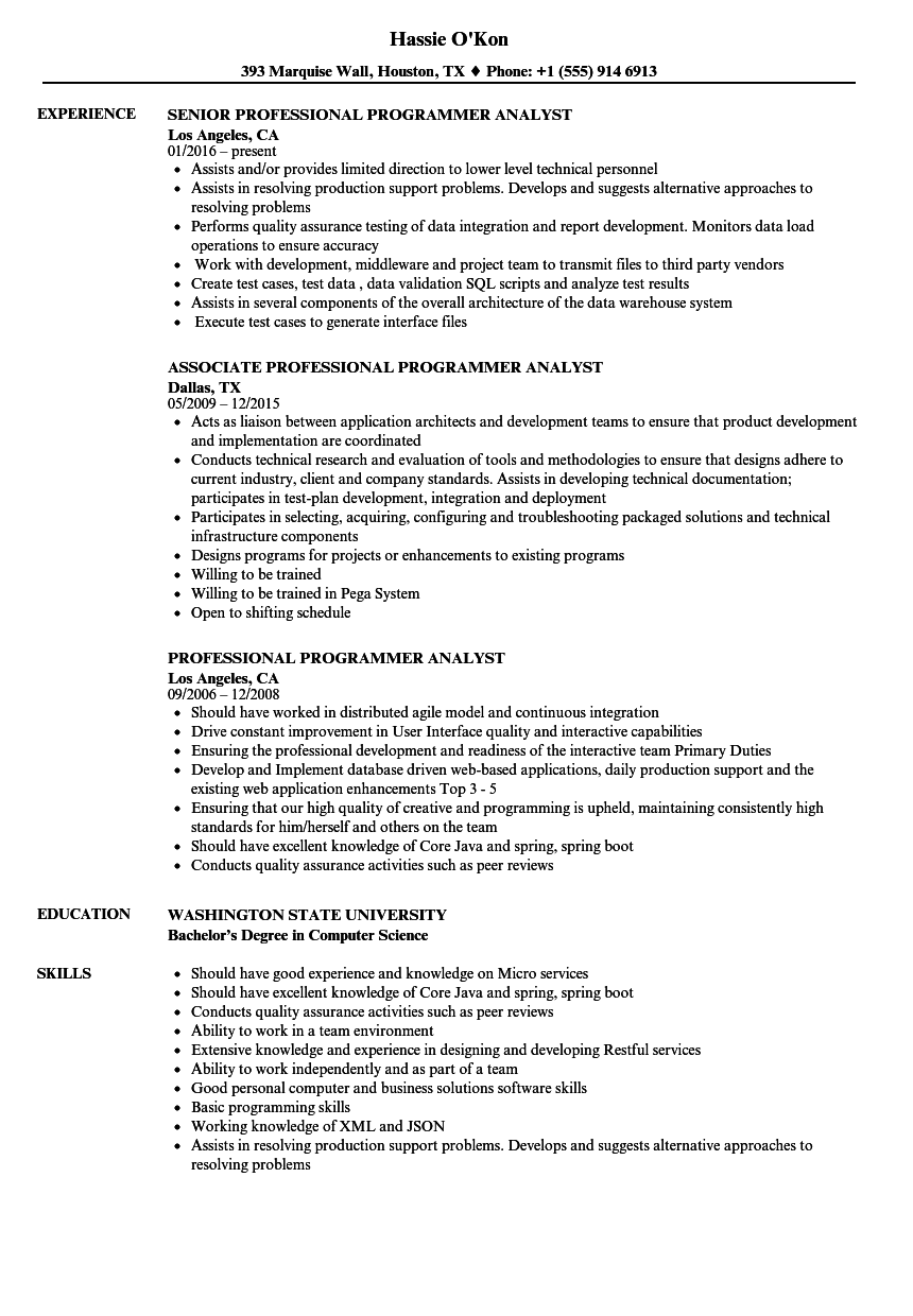 Download Professional Programmer Analyst Resume Sample As Image File