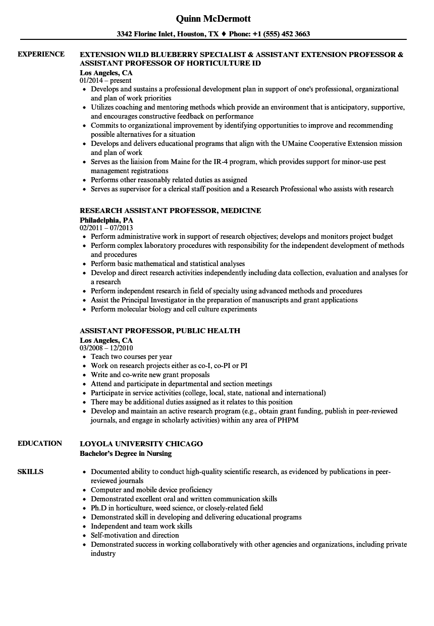 download professor assistant resume sample as image file