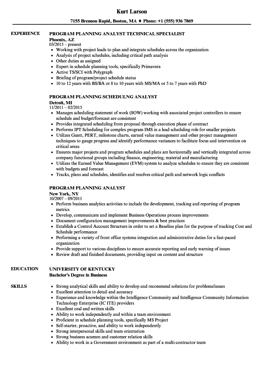 program planning analyst resume samples