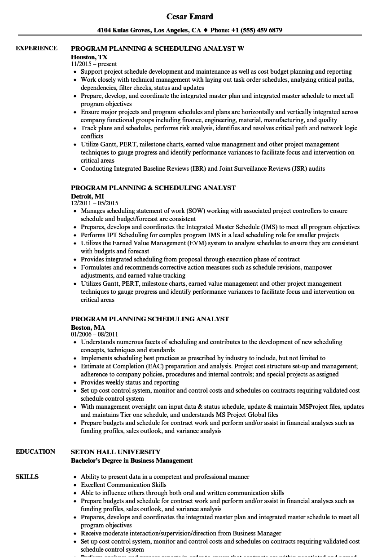 program planning scheduling analyst resume samples