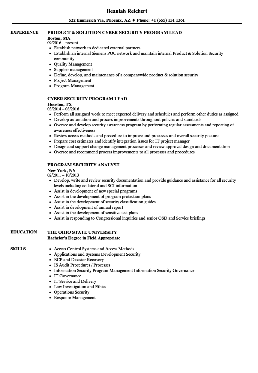 Program Security Resume Samples | Velvet Jobs