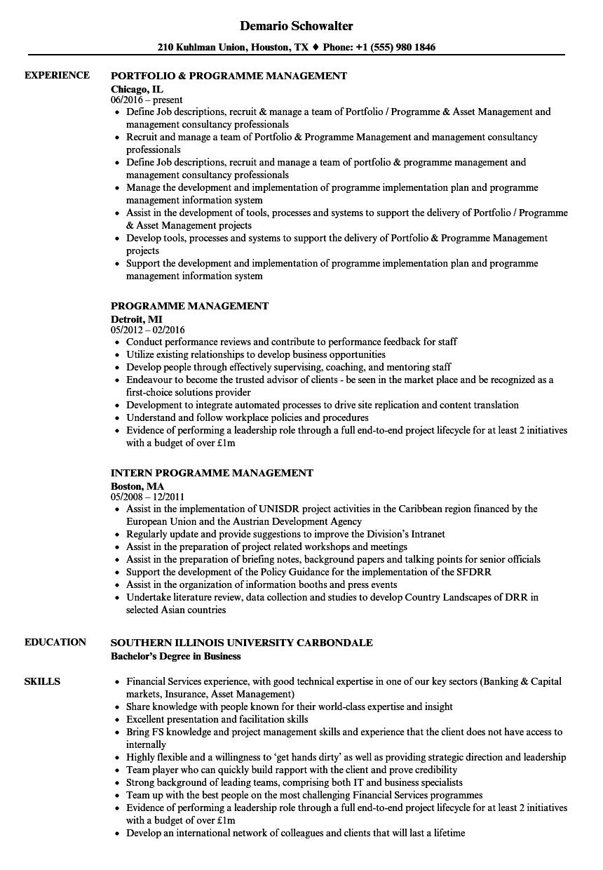 programme management resume samples  velvet jobs