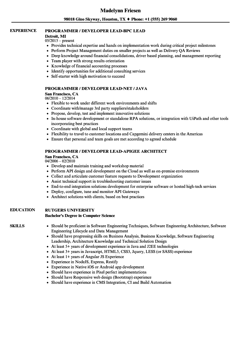 Programmer  Developer Lead Resume Samples   Velvet Jobs