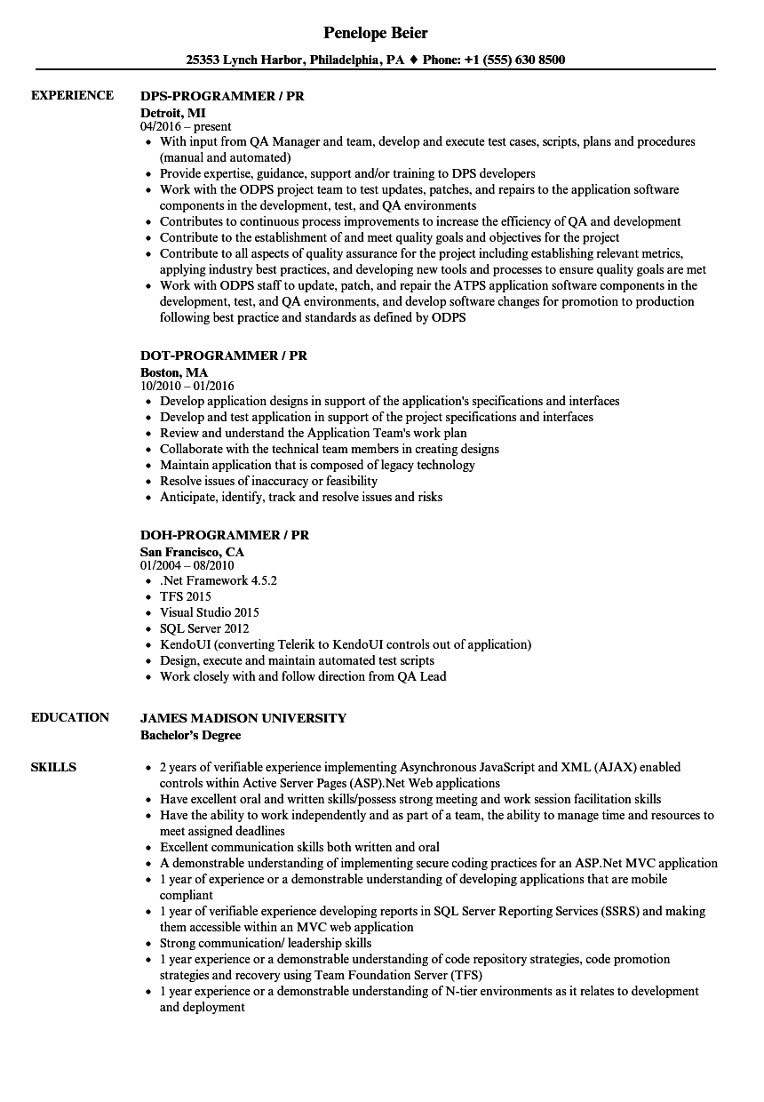 Programmer / PR Resume Samples | Velvet Jobs