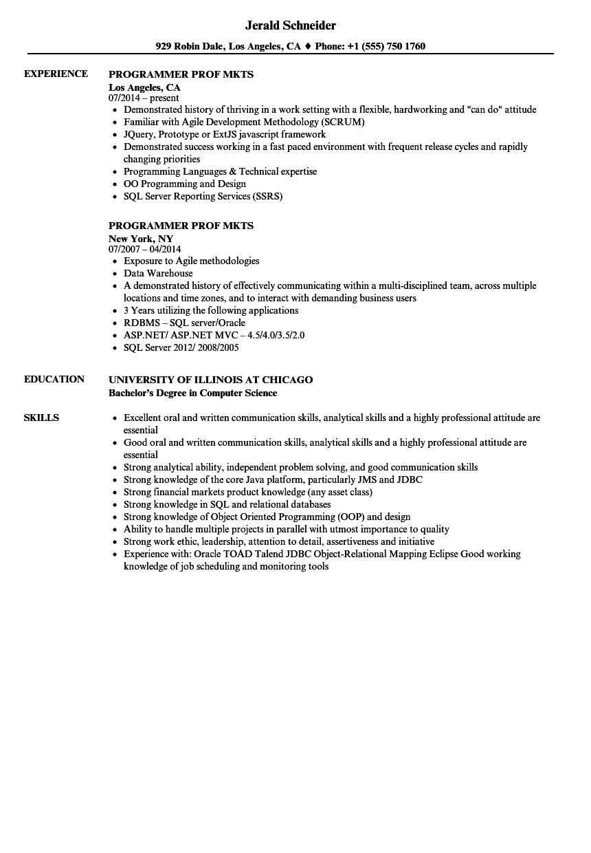 Programmer Prof Mkts Resume Samples | Velvet Jobs