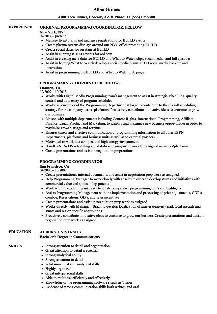 Download Programming Coordinator Resume Sample As Image File  Programming Skills Resume