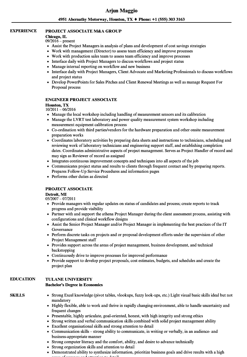 project associate resume samples