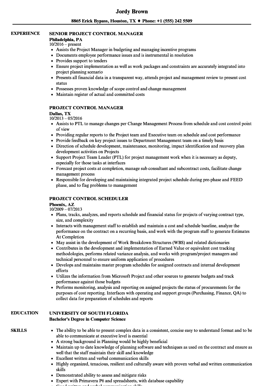 project control resume samples