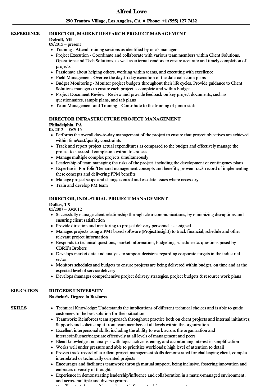 Project Director, Project Management Resume Samples | Velvet Jobs