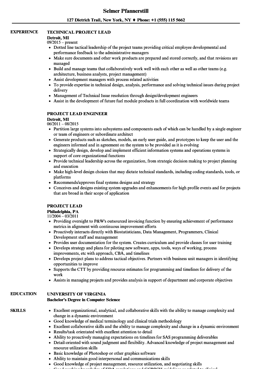 project lead resume samples