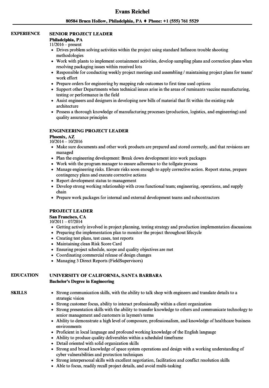 project leader resume samples