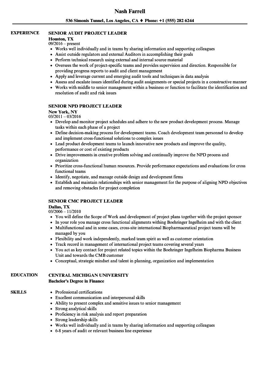 project leader senior resume samples
