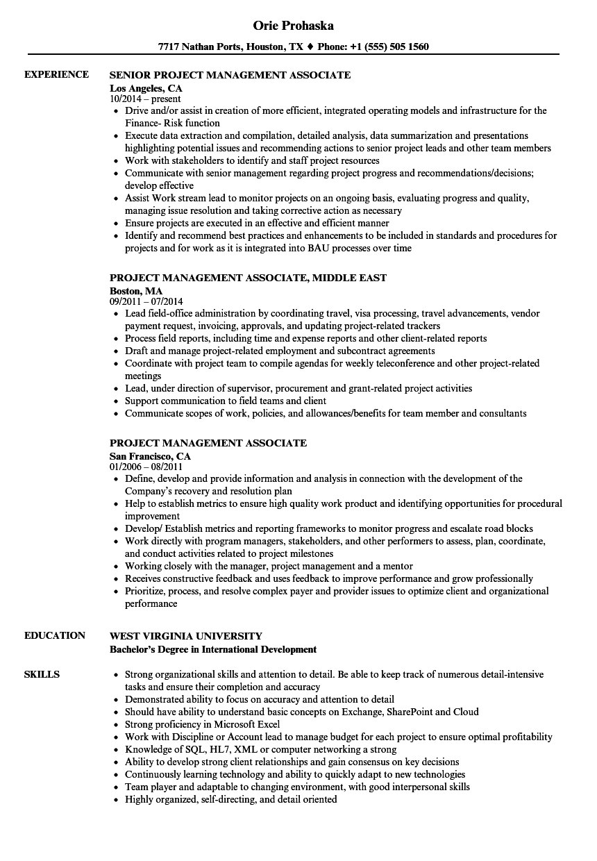 Project Management Associate Resume Samples | Velvet Jobs