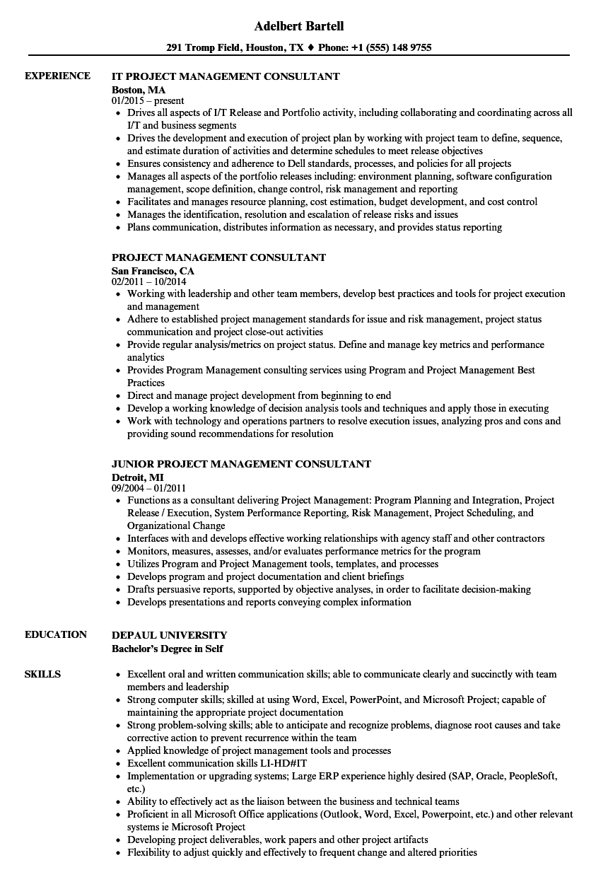 Project Management Consultant Resume Samples Velvet Jobs