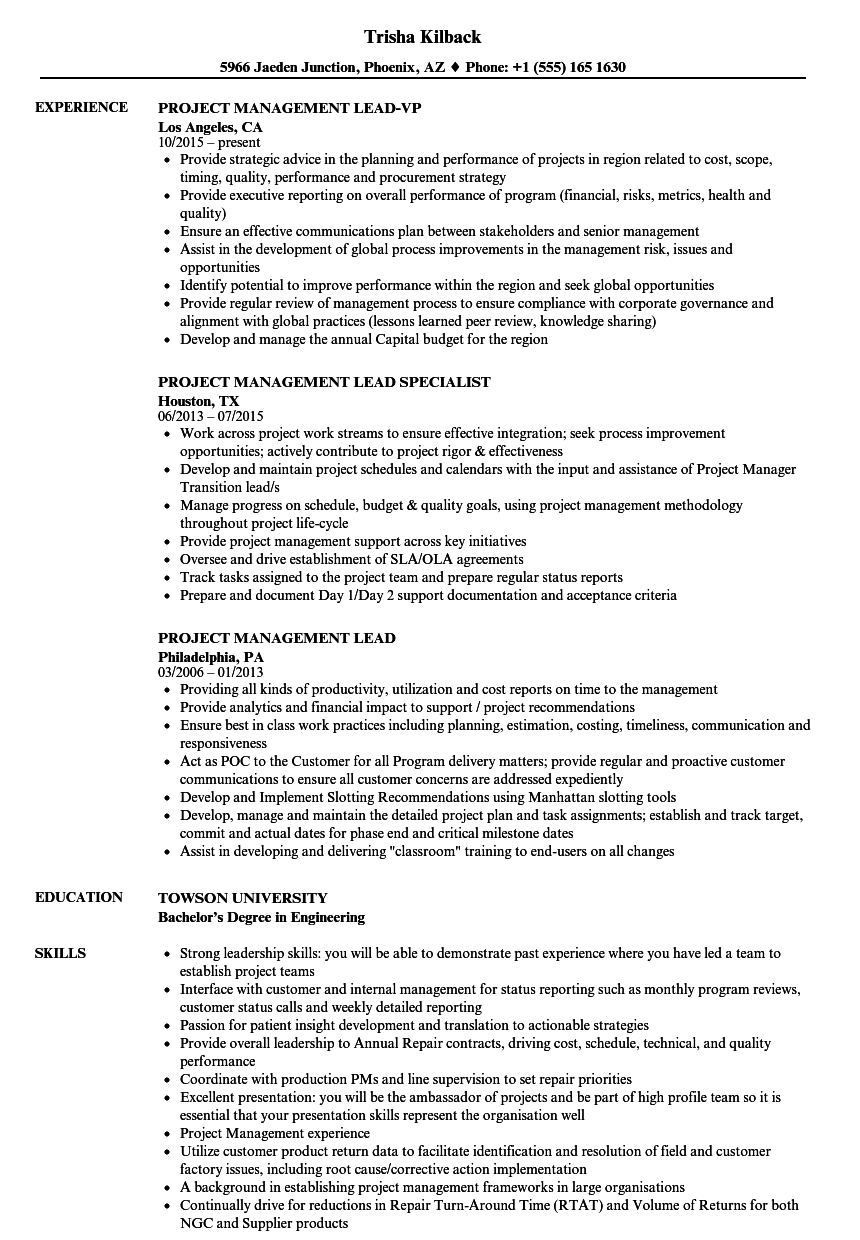 project management lead resume samples