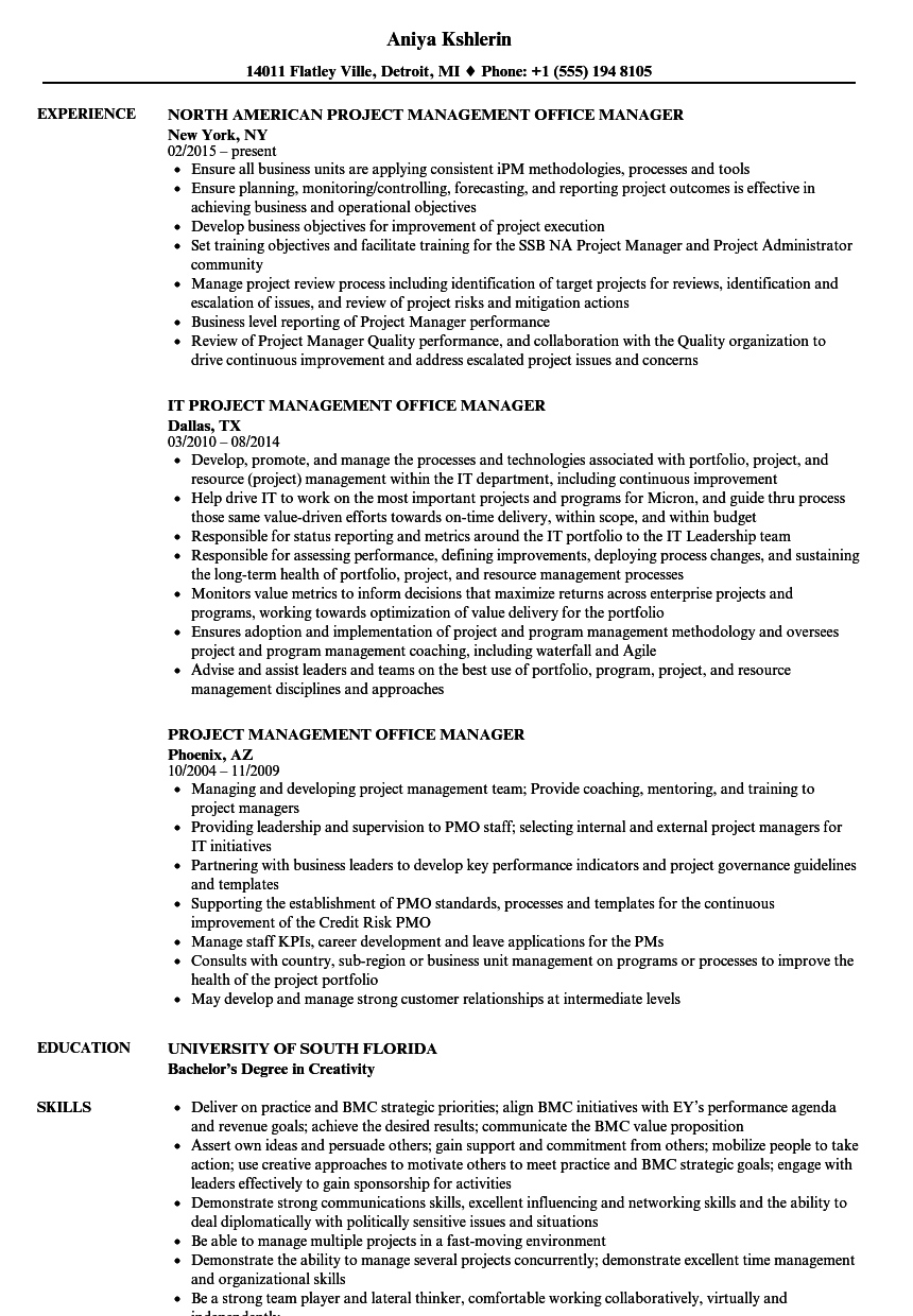 Project Management Office Manager Resume Samples | Velvet Jobs