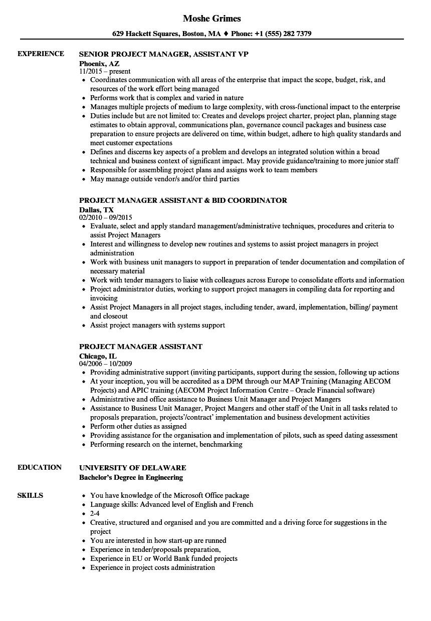 project manager assistant resume samples