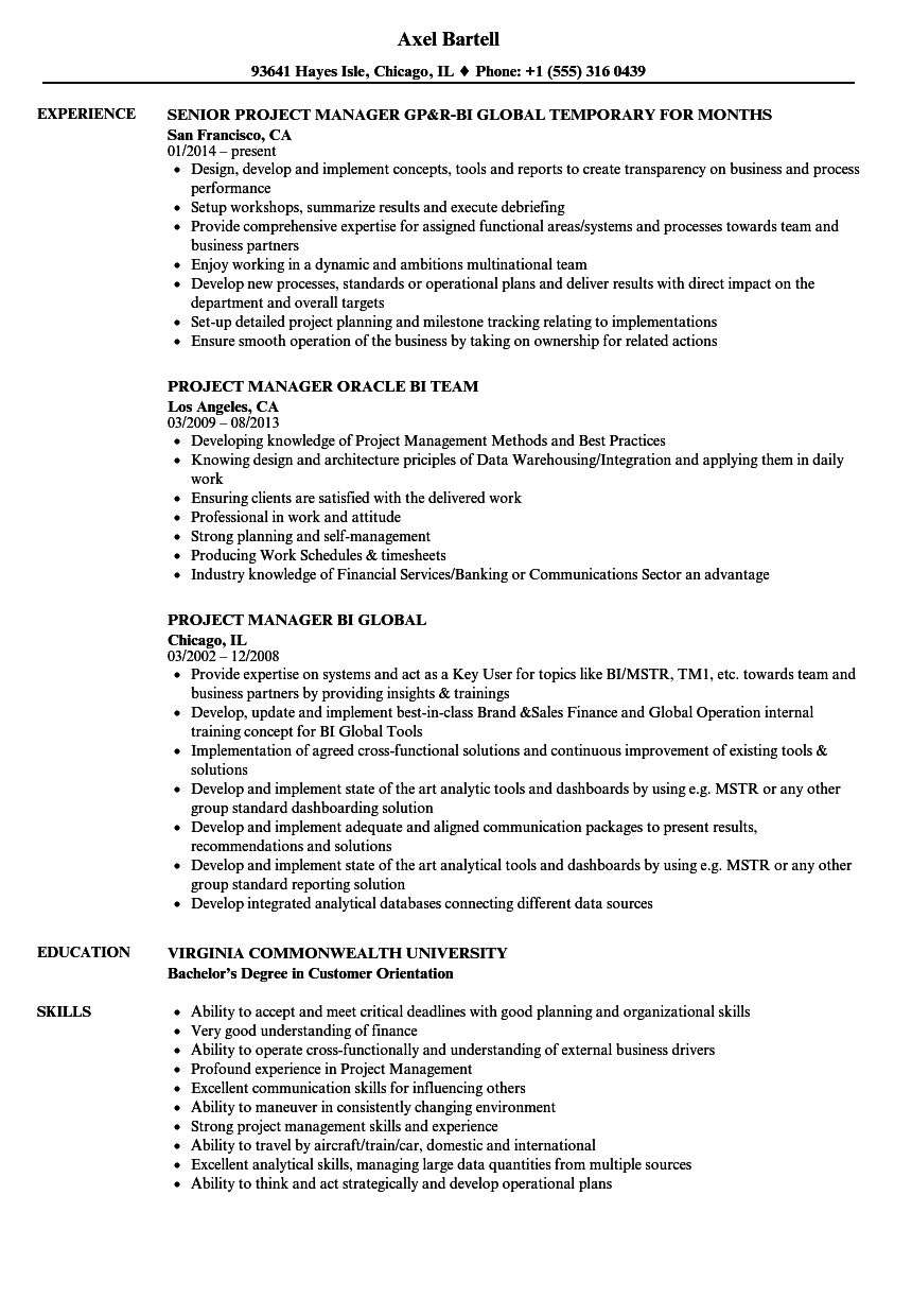 download project manager bi resume sample as image file - Bi Project Manager Resume Sample