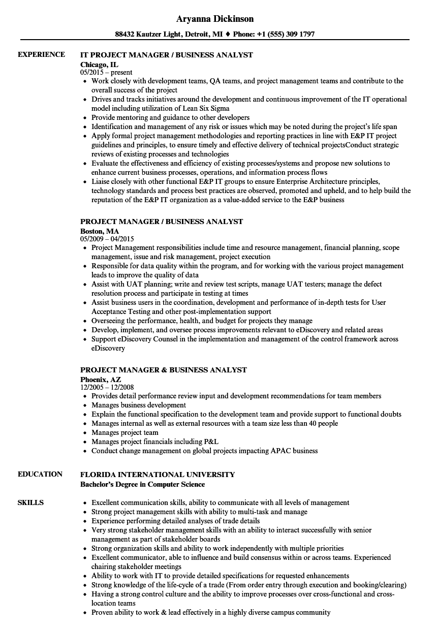 Project Manager / Business Analyst Resume Samples | Velvet Jobs