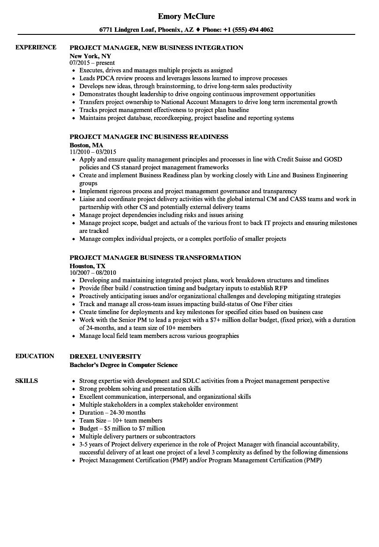 Project Manager Business Manager Resume Samples Velvet Jobs