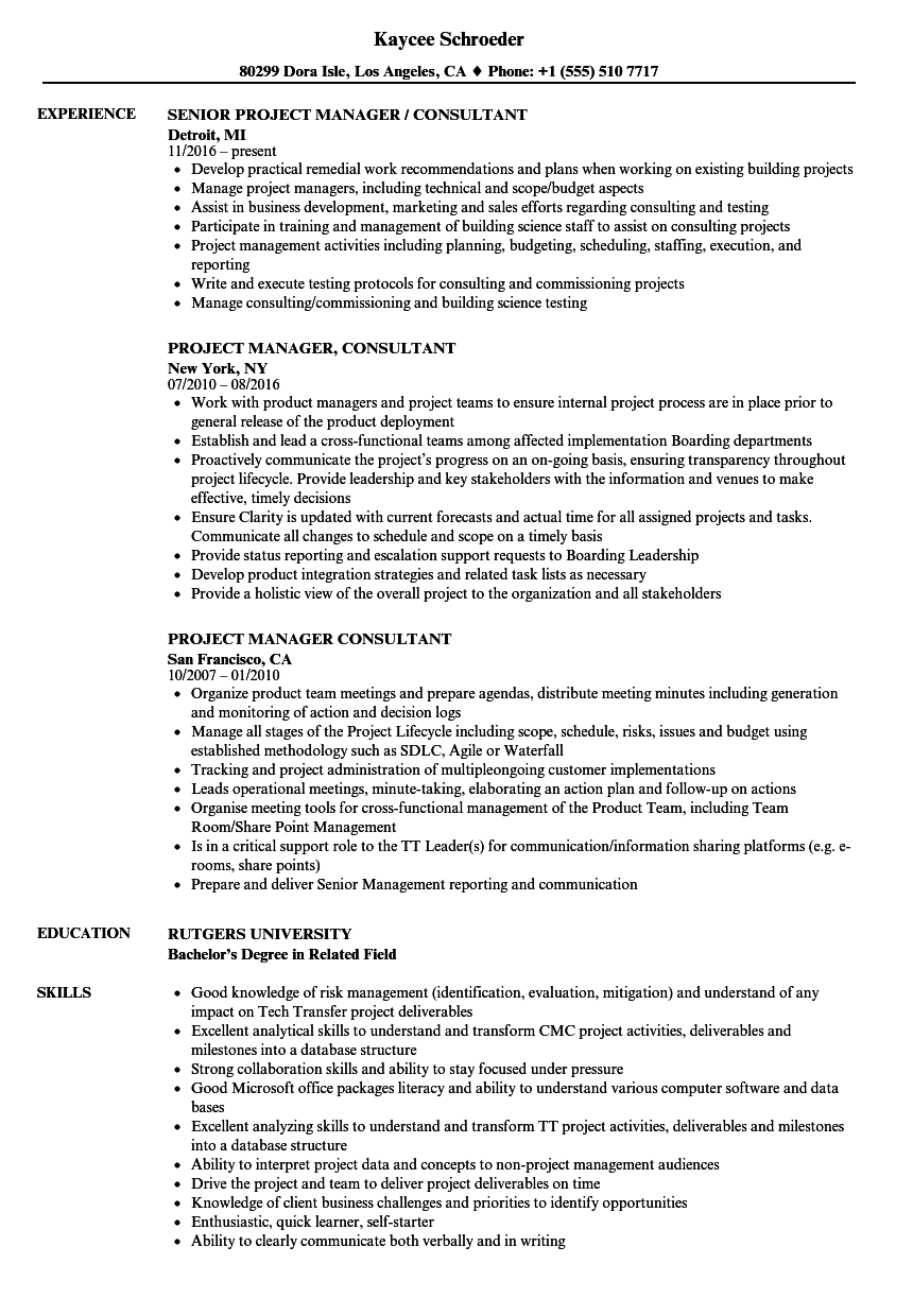 project manager consultant resume samples