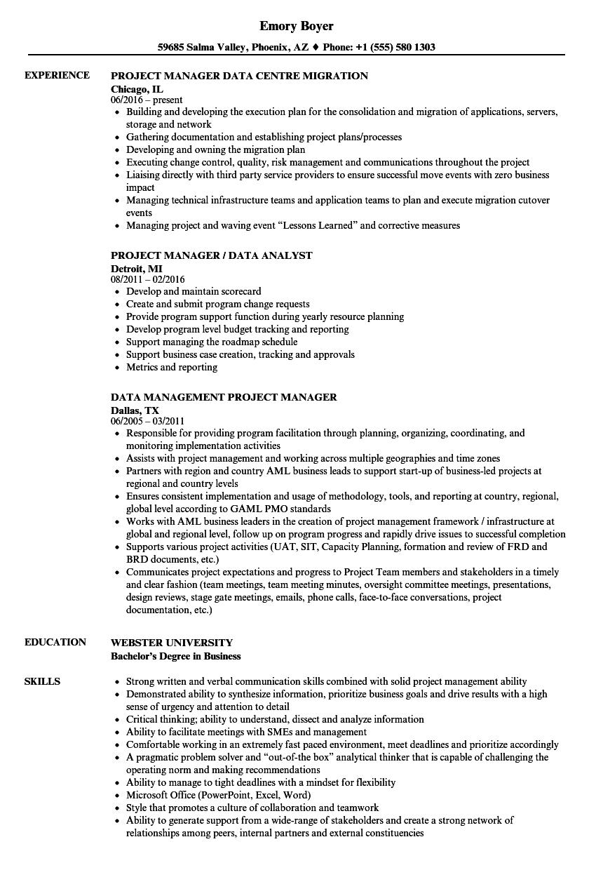 Project Manager Data Resume Samples | Velvet Jobs