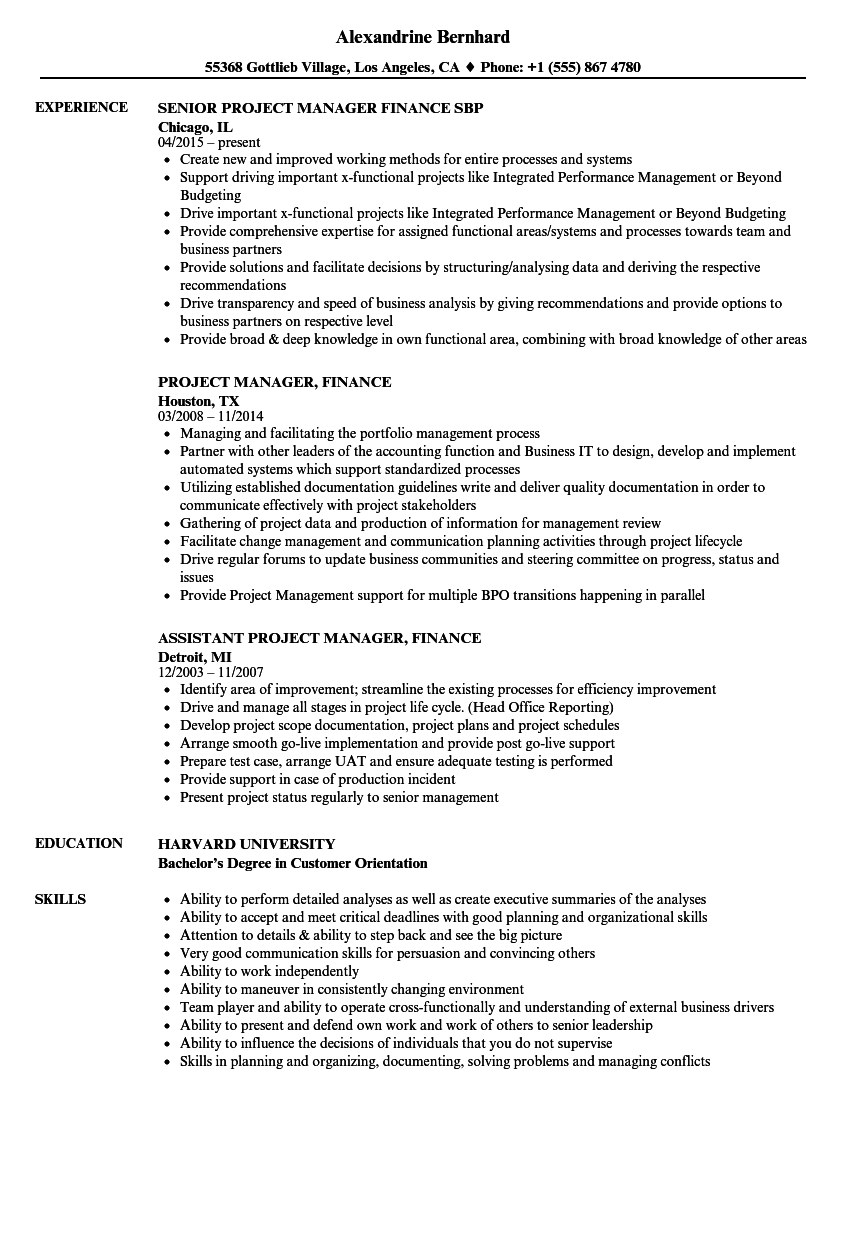 project manager finance resume samples