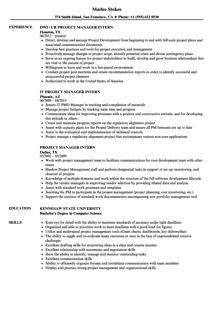 Download Project Manager Intern Resume Sample As Image File  Digital Project Manager Resume