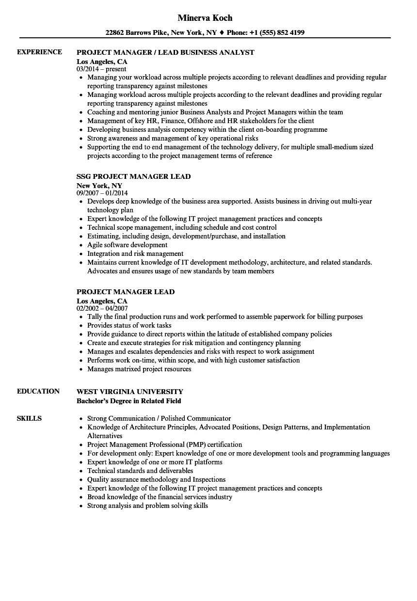 Project Manager Lead Resume Samples Velvet Jobs