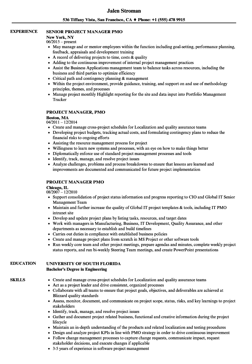 project manager  pmo resume samples