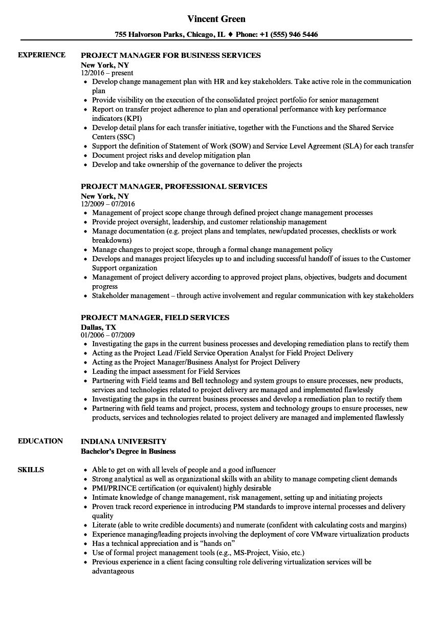 project manager  services resume samples