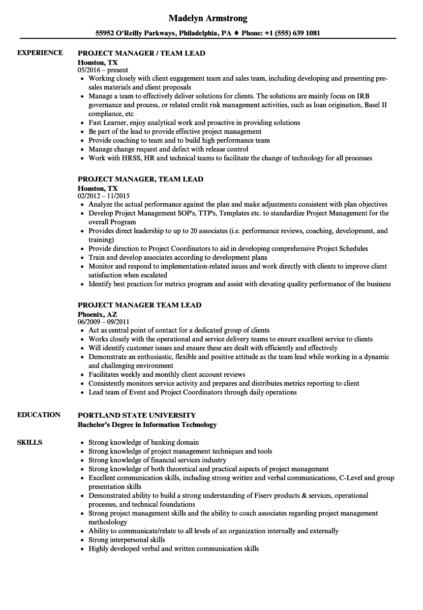 project manager  team lead resume samples