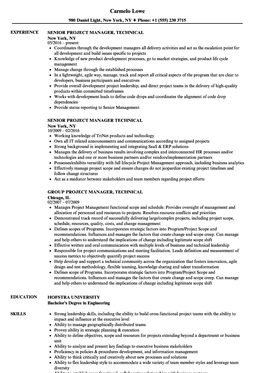 project manager  technical resume samples