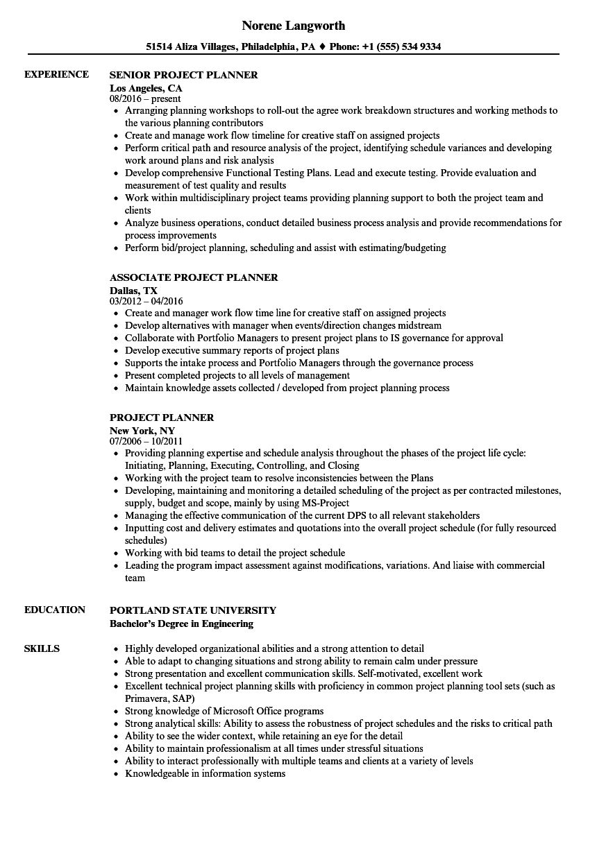 Download Project Planner Resume Sample As Image File