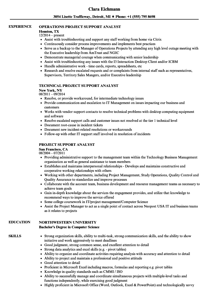 Project Support Analyst Resume Samples