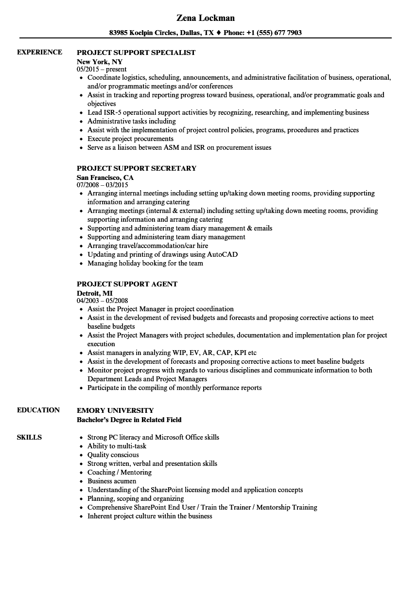project support resume samples