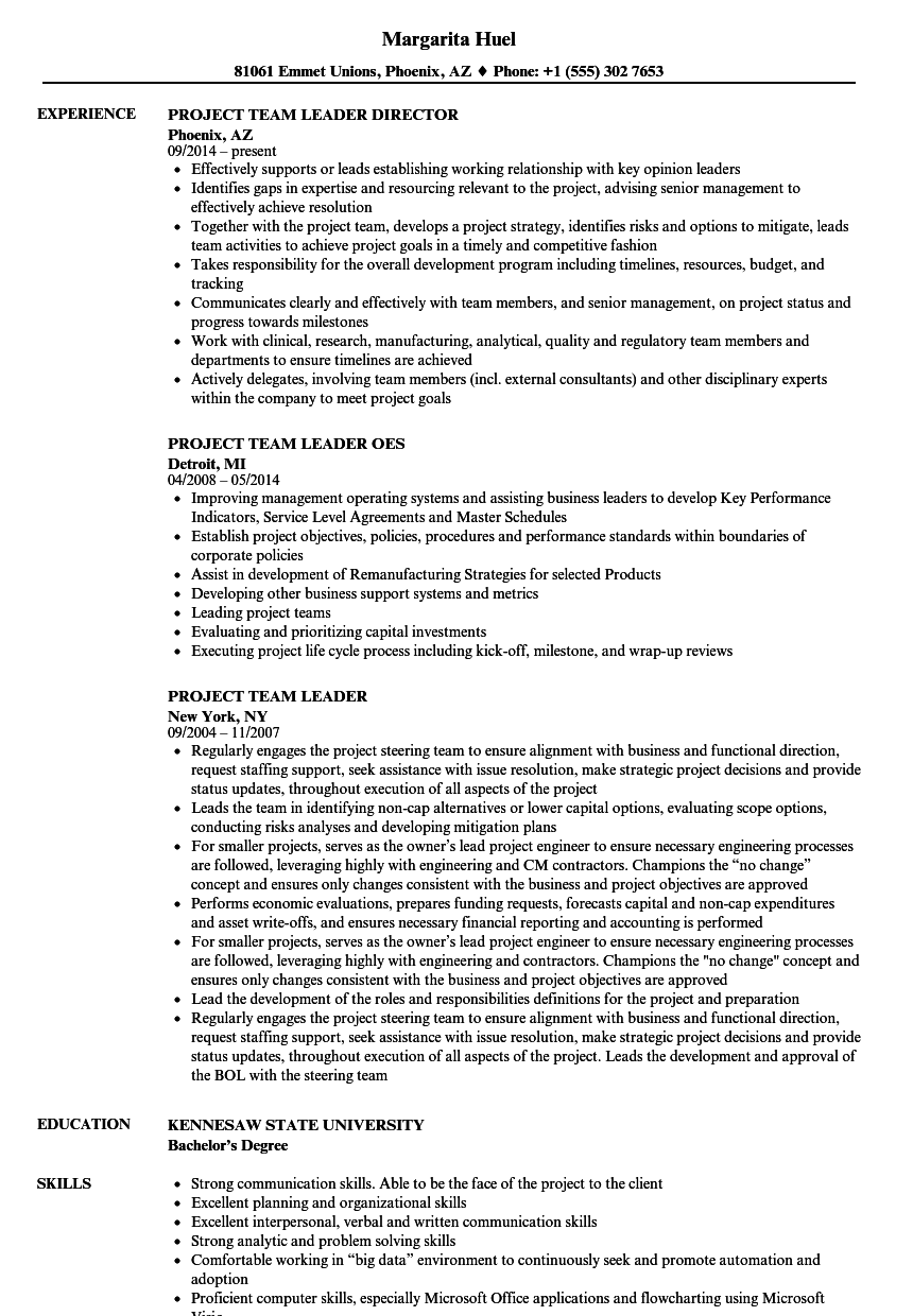 Resume Sample With Communication Skills