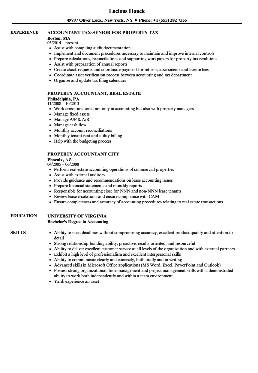 Property Accountant Accountant Resume Samples  Velvet Jobs