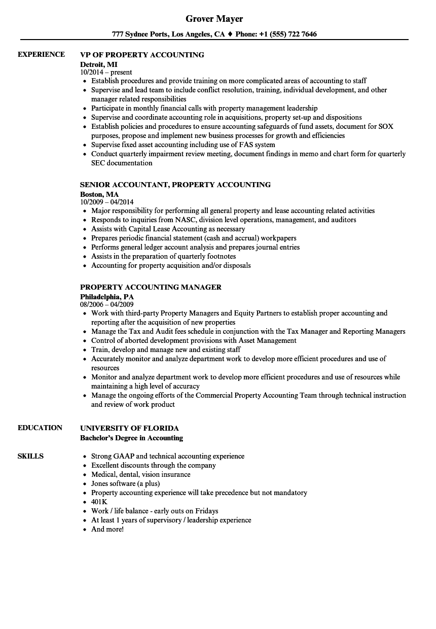 Property Accounting Resume Samples | Velvet Jobs