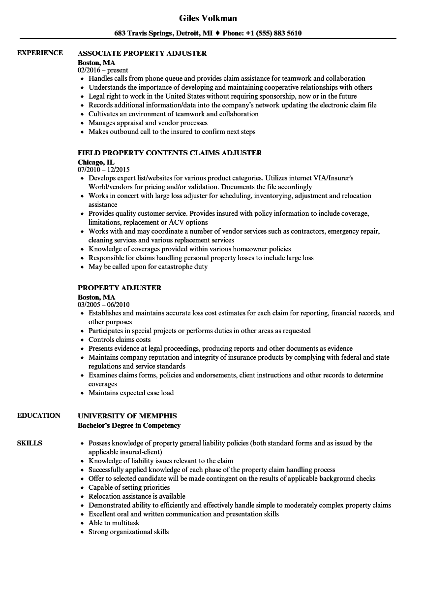 Property Adjuster Resume Samples | Velvet Jobs