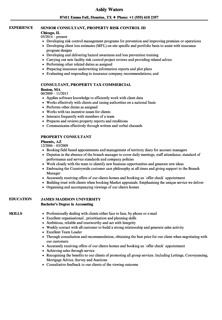 property consultant resume samples