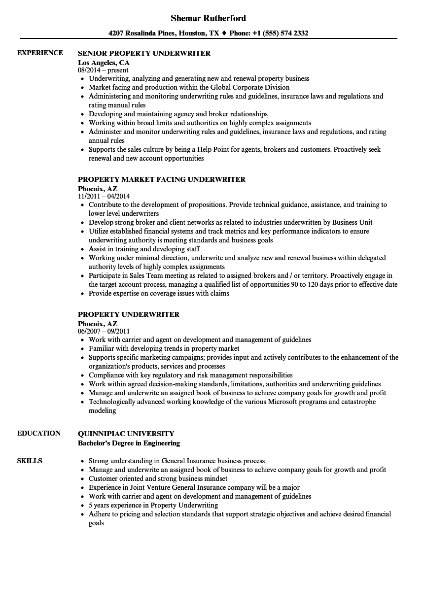 property underwriter resume samples velvet jobs