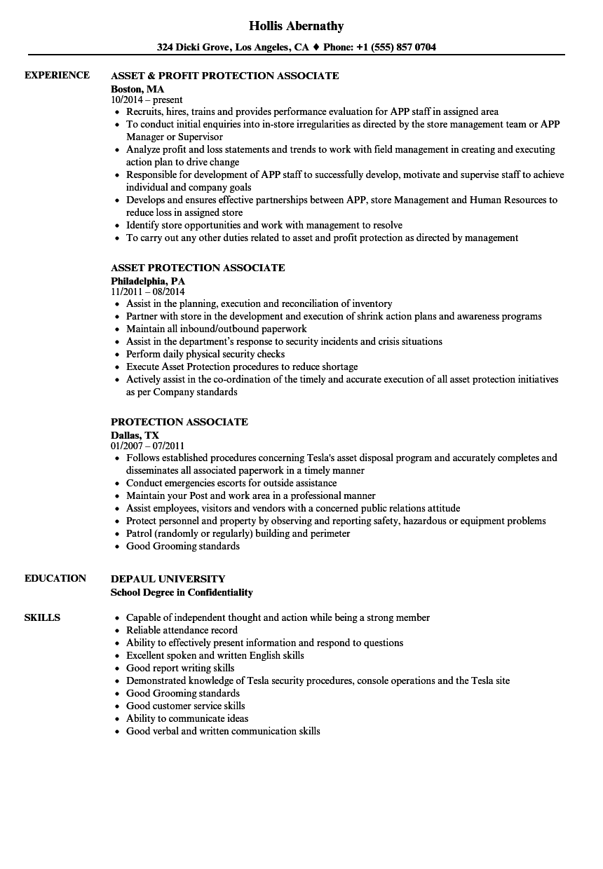 Download Protection Associate Resume Sample As Image File