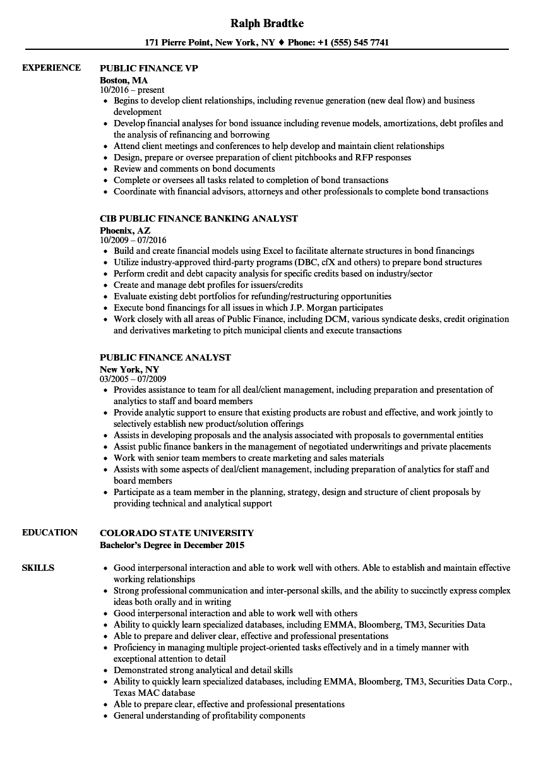 Download Public Finance Resume S&le as Image file