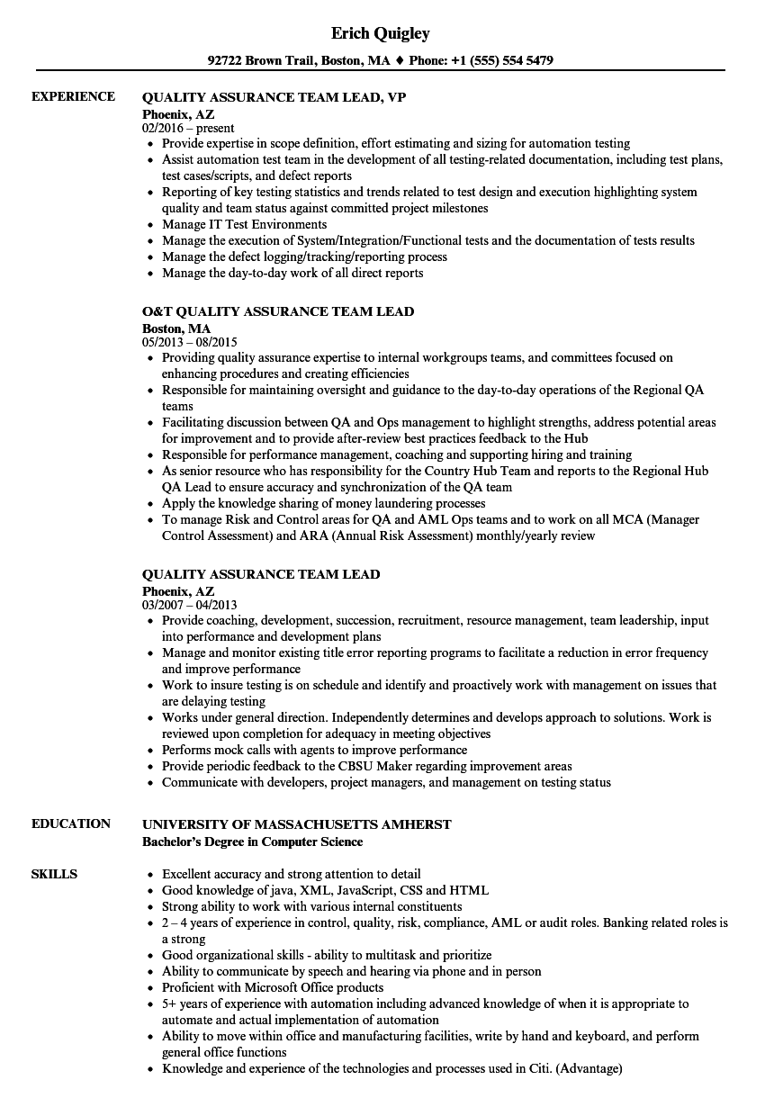 Quality Assurance Team Lead Resume Samples | Velvet Jobs