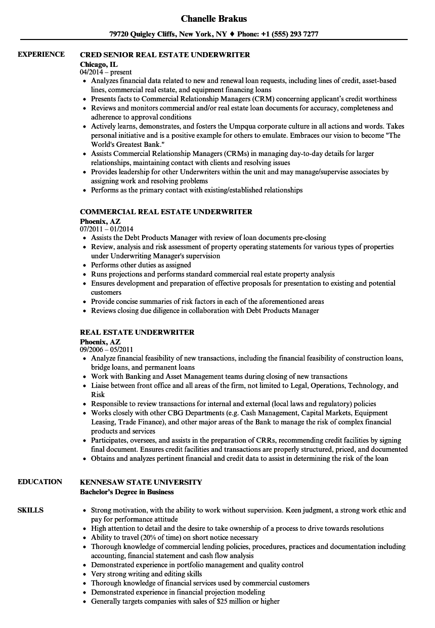 Real estate underwriter resume samples velvet jobs download real estate underwriter resume sample as image file altavistaventures Gallery