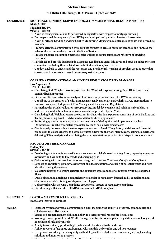 regulatory risk manager resume samples velvet jobs