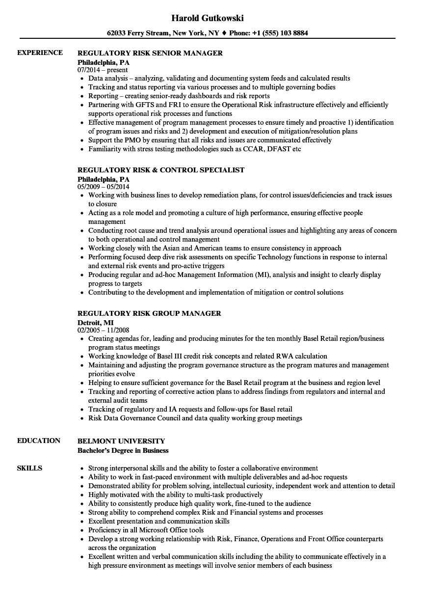 regulatory risk resume samples