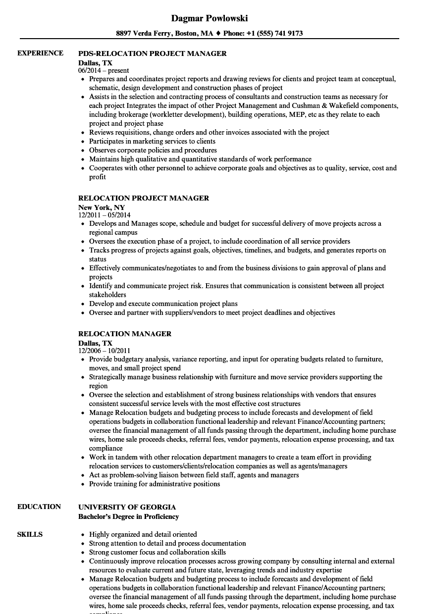 Download Relocation Manager Resume Sample As Image File  Relocation Resume