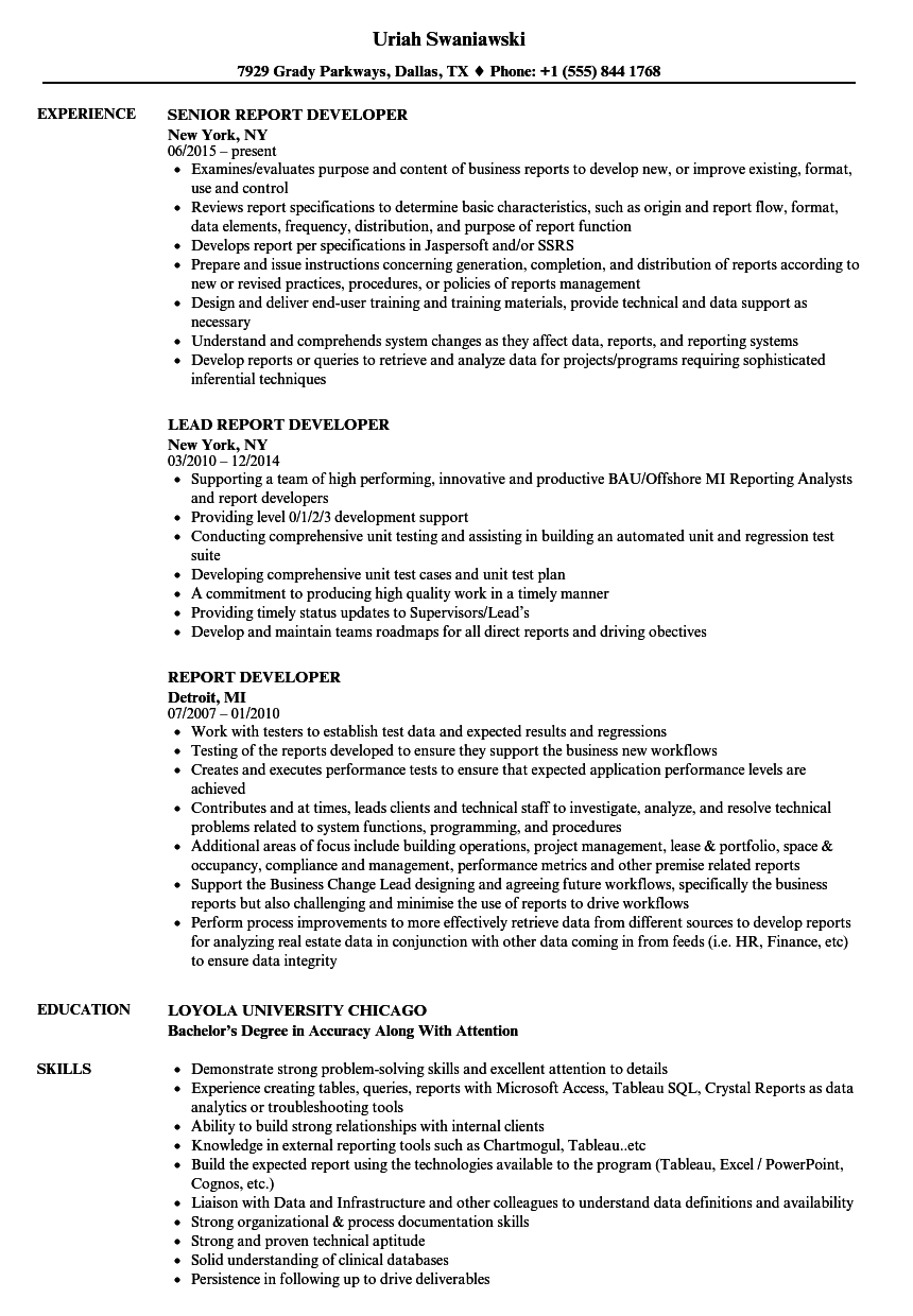 Report Developer Resume Samples | Velvet Jobs